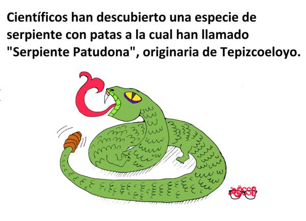 Albures Serpiente Patudona